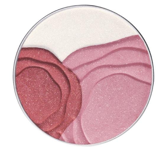 лимитированный выпуск пудры Shiseido Camellia Compact