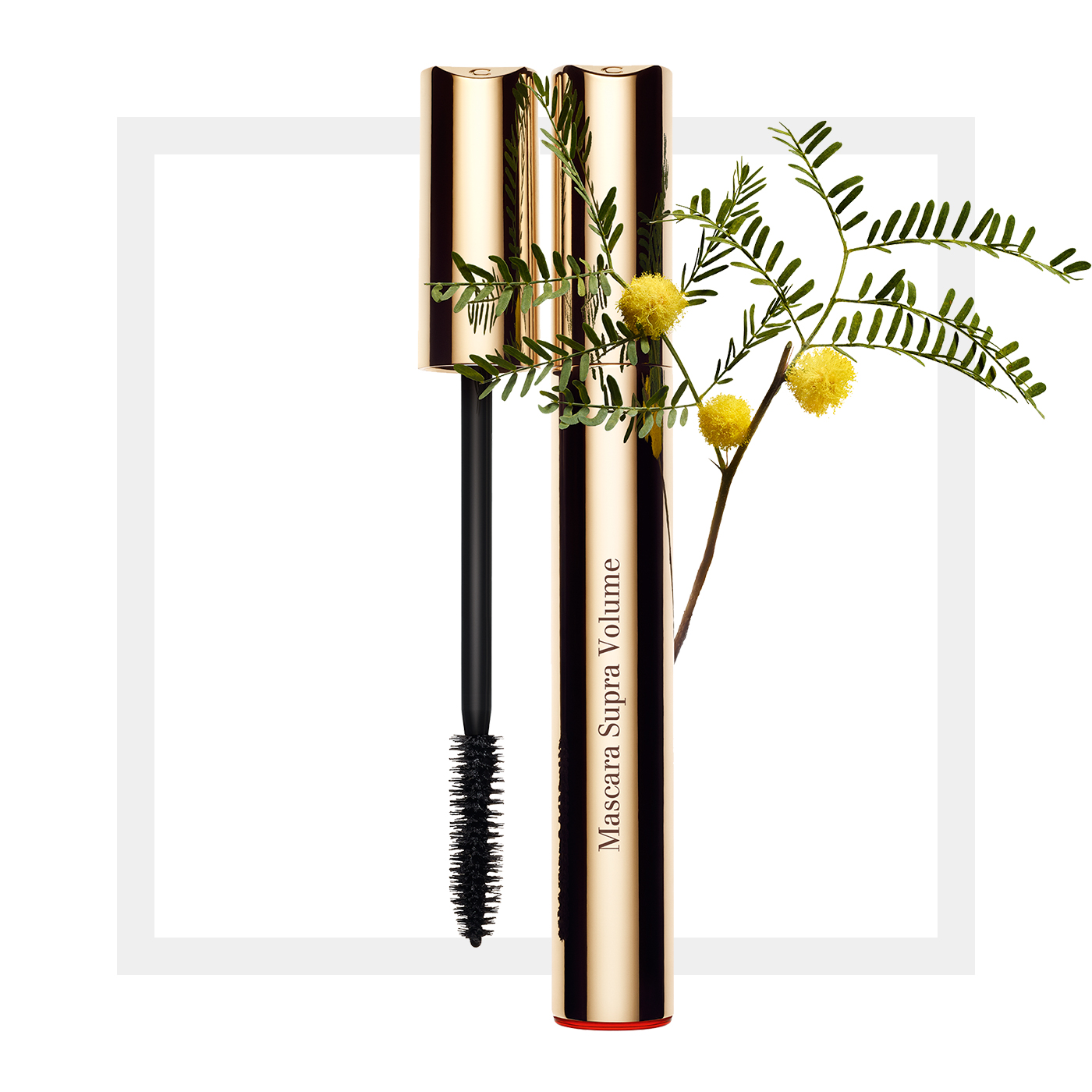 Осенняя коллекция макияжа Clarins Volume Fall 2016 Collection